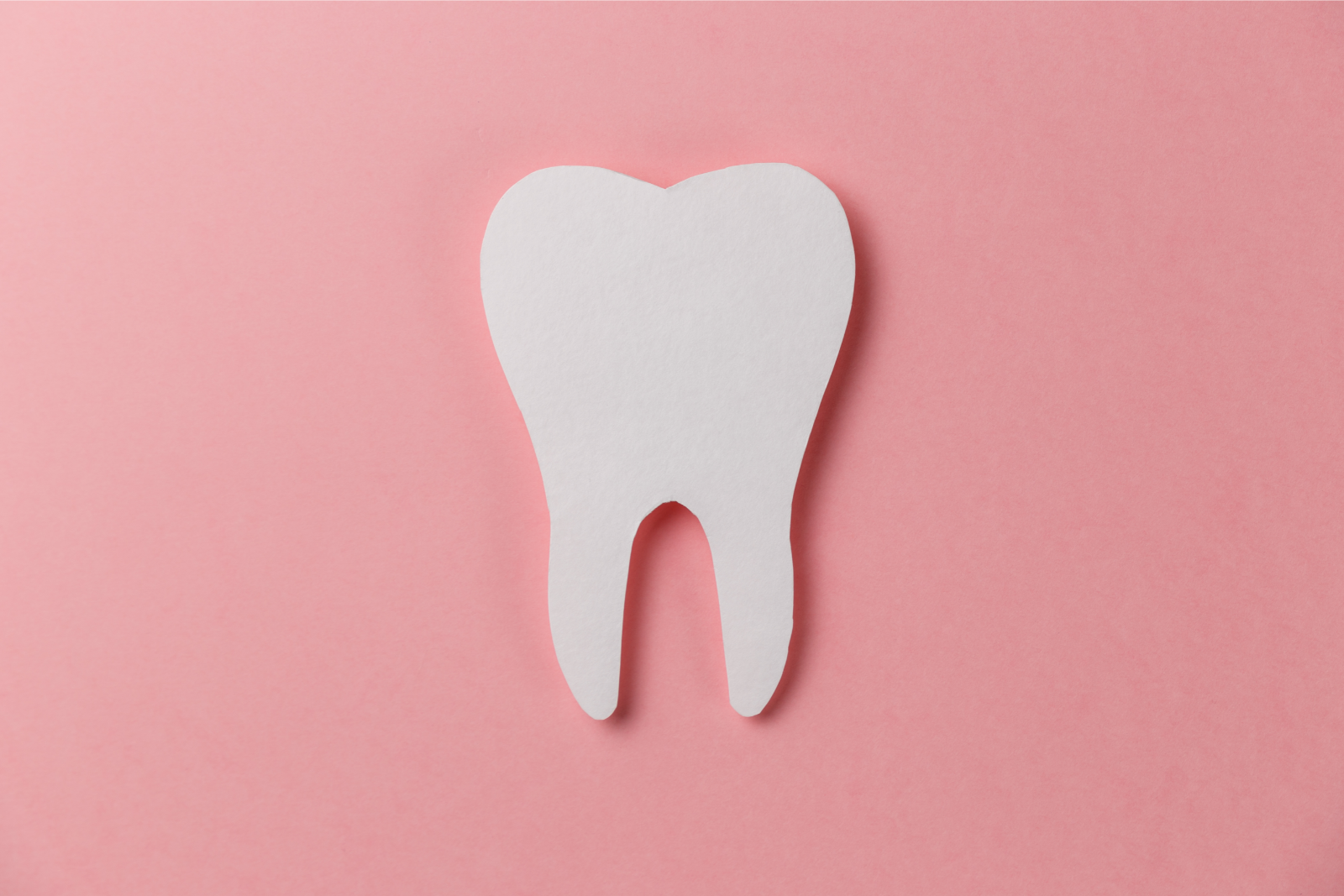 12 Fun Facts About Teeth